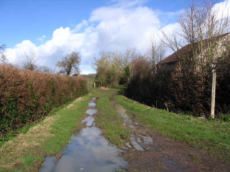 Green Lane, Fivehead