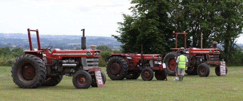 Three old Massey Ferguson Tractors