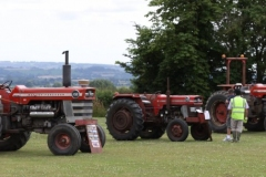Three old Massey Ferguson Tractors